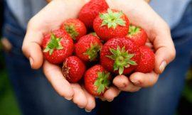 Las mejores frutas y verduras para tratar la periodontitis
